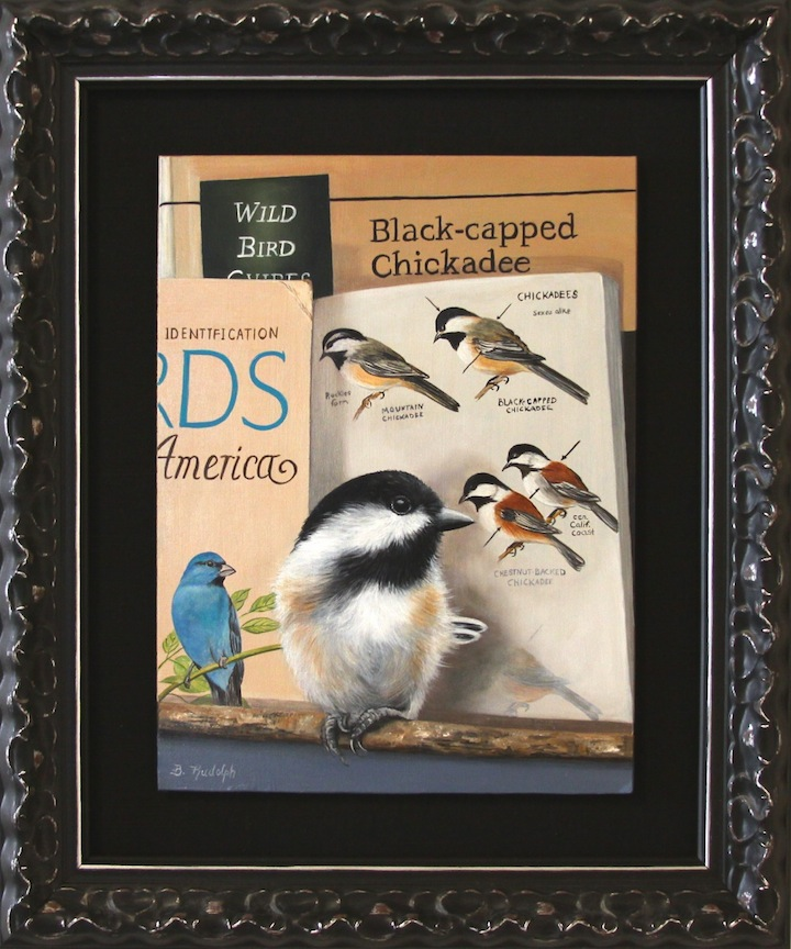The Wild Bird guide