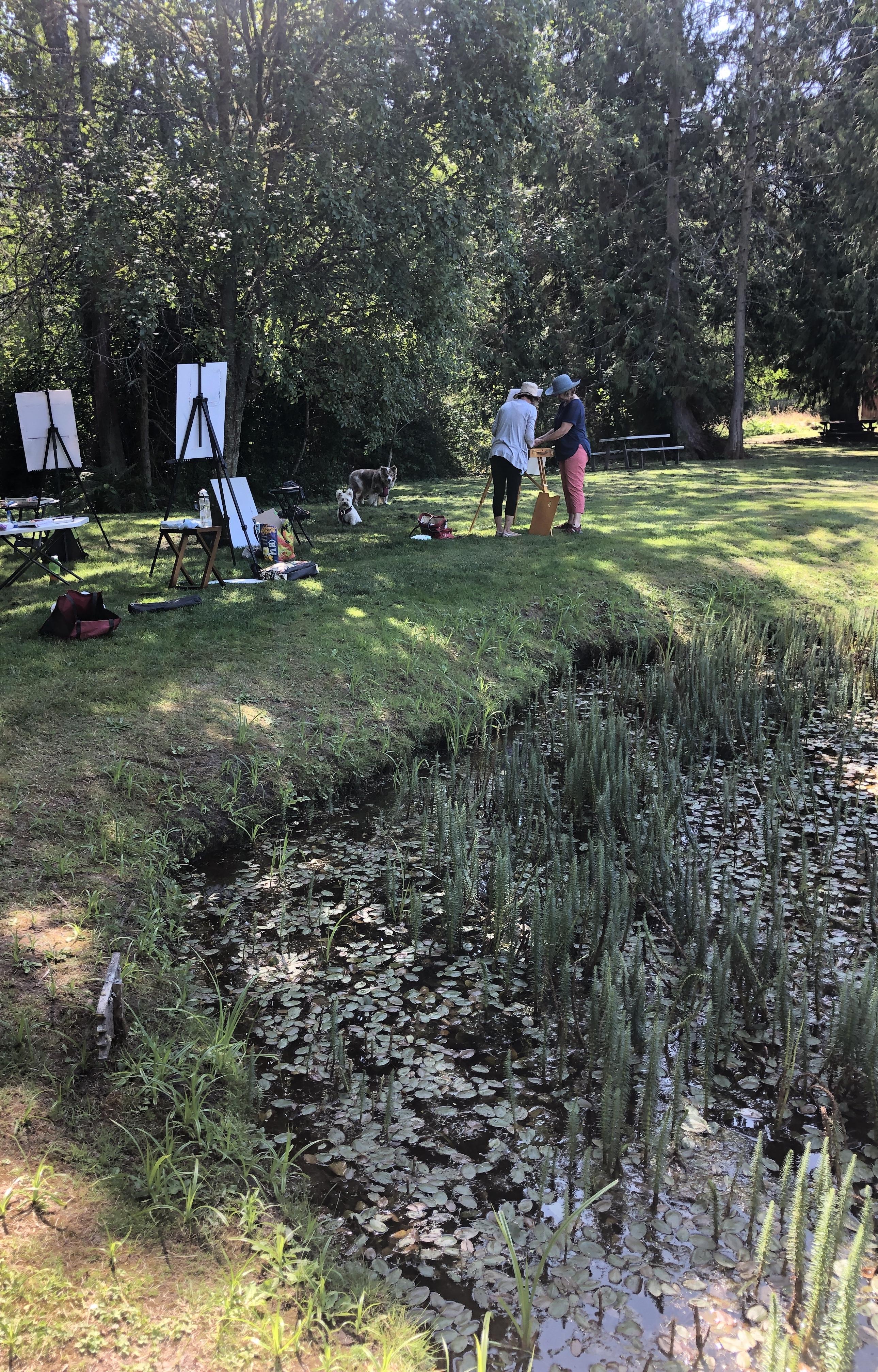 Nelson's Duck Pond Plein Air