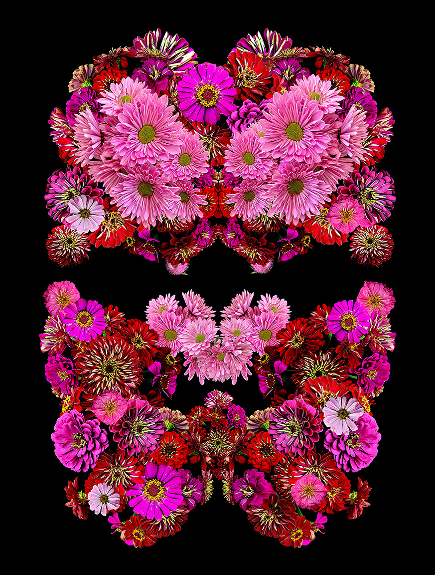 heidi carlsen rogers power masks flowers zinnias red pink magenta