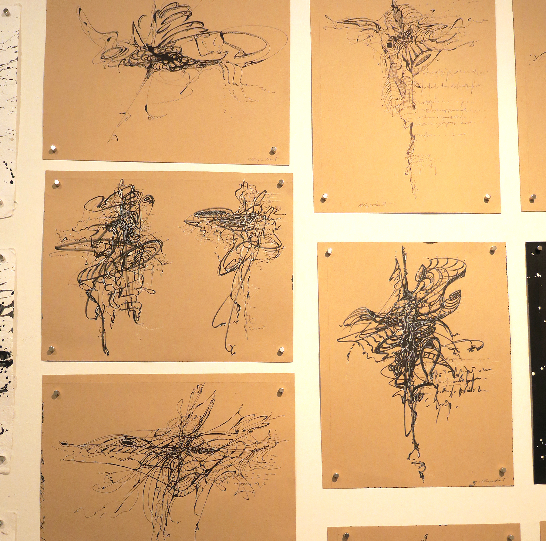 Kathryn Hart, Ink Drawings in Daunting Transitions Solo Show, Krakow 2018