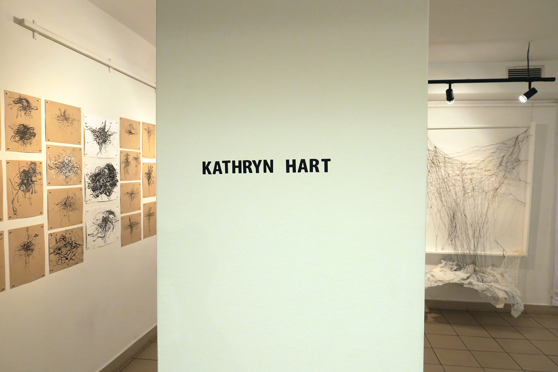 Kathryn Hart,  Daunting Transitions, Solo Show, Krakow 2018