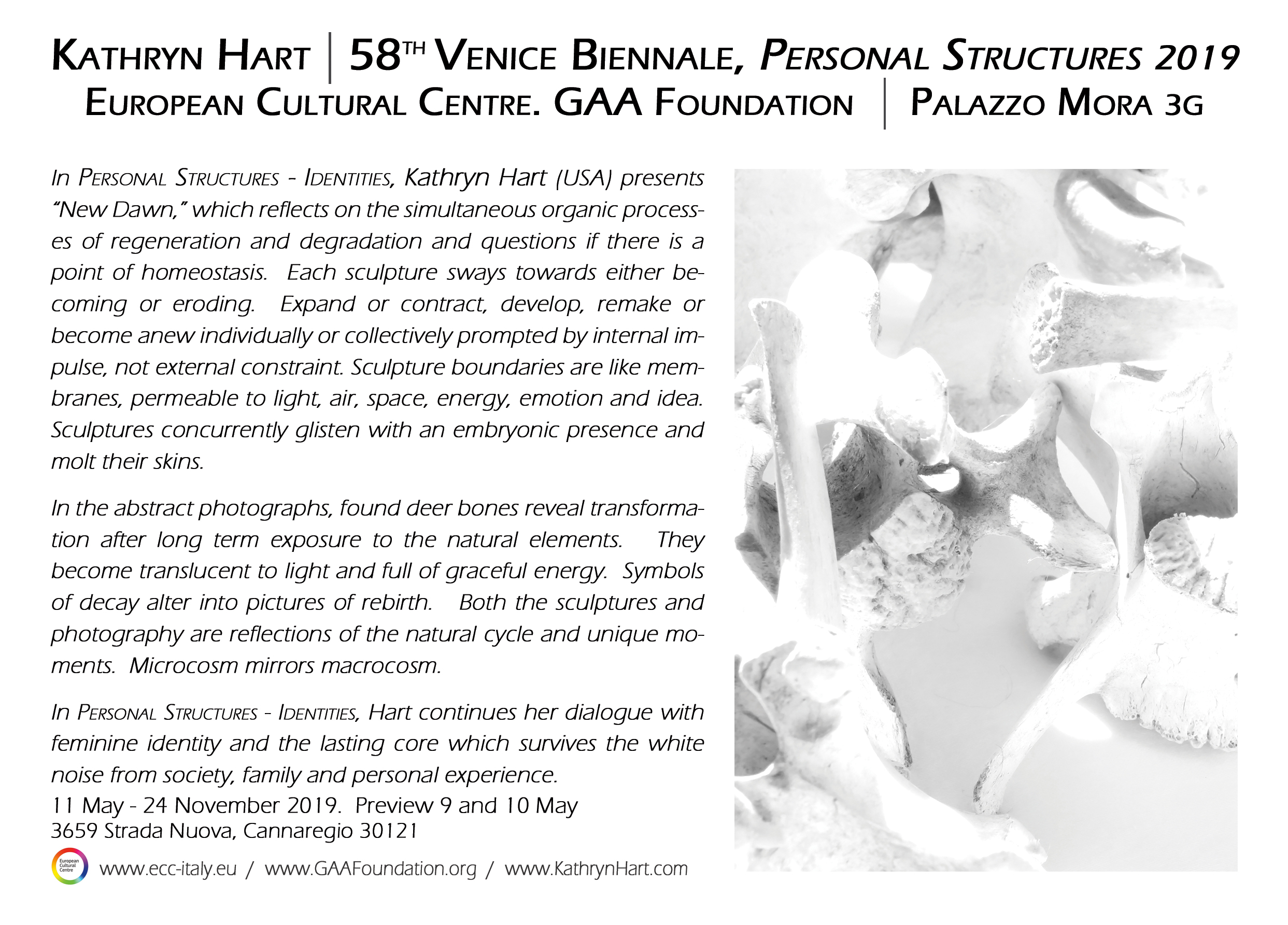 Kathryn Hart in Personal Structures, European Cultural Centre, Palazzo Mora, 58th Venice Biennale