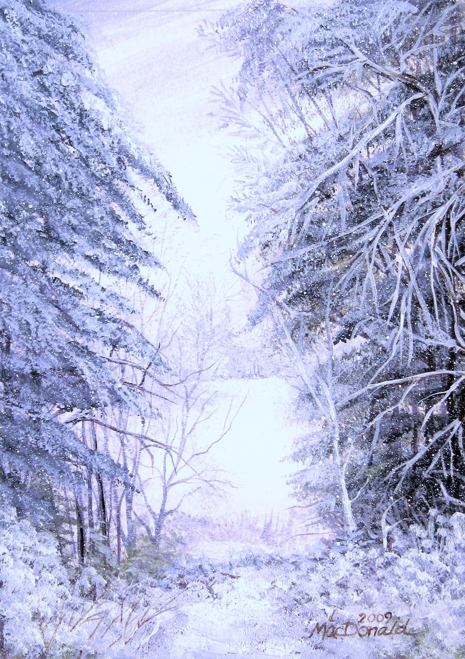 A Day to Love Winter